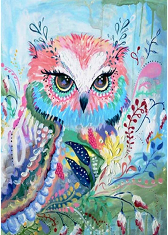 Gems Picture DIY 5D Diamond Painting Full Kits,Owl Cute Animal Rhinestone Embroidery Pictureskit Arts for Wall Art Decor,40/×50Cm,30/×40Cm
