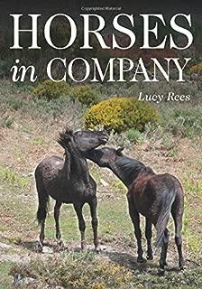 Mejor The Company Of Pets de 2020 - Mejor valorados y revisados