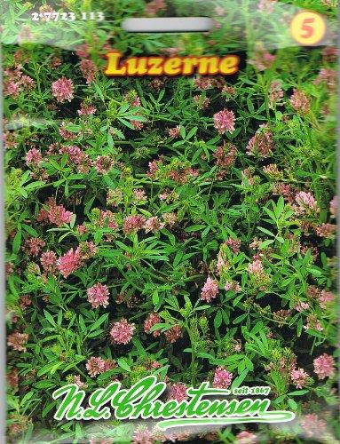 Chrestensen Luzerne ,liefert hochwertiges, nährstoffreiches Futter, mehrjährig, Gründüngung