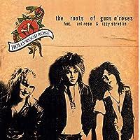 Roots of Guns N Roses [Vinilo]