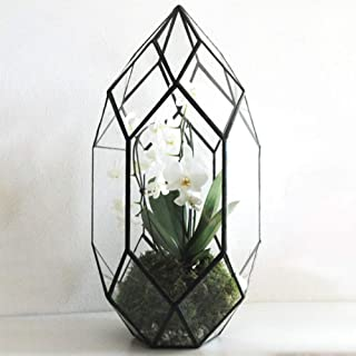 Ferrisland Handmade Black Large Glass Terrarium Irregular Geometric Planter Indoor Air Plants Holder Window Balcony Display Succulent Flower Pot