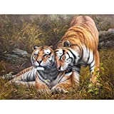 OKOUNOKO Peindre en Chiffres pour Les Enfants Tigre Roi Tigre Dessin À Colorier des Photos Moderne Kits De Bricolage Ouvrages d'art Maison Décoration Cadeau 40X50Cm sans Cadre