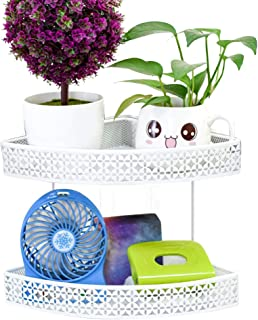 Exttlliy Metal Hanging Office Cubicle Corner Rack Space-Saving Floating Shelf Plant Caddy for Desk Sundries (White, Double Layer)