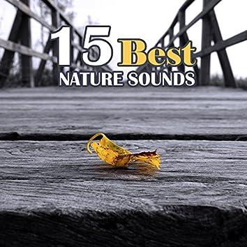 15 Best Nature Sounds