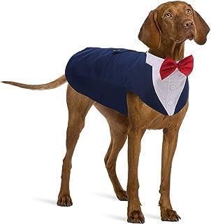 Black dog tuxedo with champagne bow tie Dog wedding attire Pomeranian spitz dog tuxedo Formal dog suit Birthday dog costume Designer tuxedo