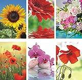 50 Grußkarten Blumen neutrale Glückwunschkarten Klappkarten Hüllen 991-5404