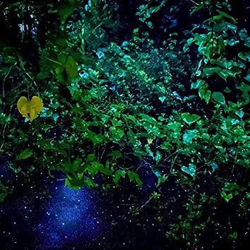 Moss Green Planet