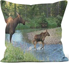 Moose Cow and Calf Crossing Colorado River Burlap Pillow Home Decor Throw Pillow Cover,HD Printing Cotton Linen Cushion for Couch Sofa Bedroom Livingroom Kitchen Car,16