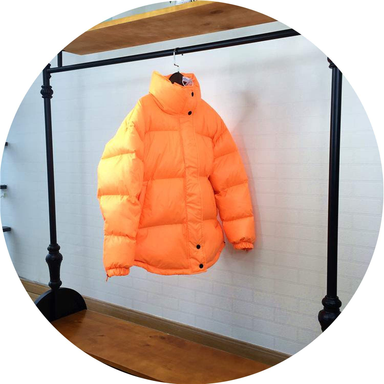 Winter Women Down Coat Loose Bread Overcoat Snow Parkas Silver Duck Down Jacket