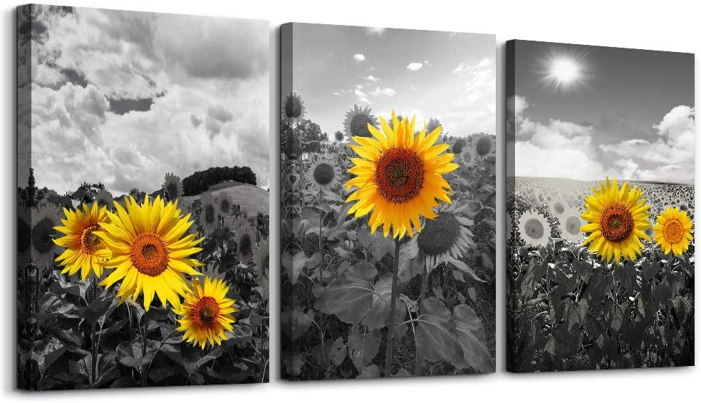 Amazon Com Canvas Wall Art For Living Room Family Decor Kitchen Black And White Pastoral Scenery Sunflower Flowers Bedroom Painting Home Decoration Bathroom Pictures Artwork 16x12 3 Piece