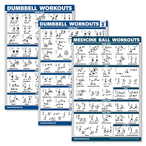 Palace Learning 3 Pack: Dumbbell Workouts Posters Volume 1 amp 2  Medicine Ball Exercises  Set of 3 Workout Charts Laminated 18quot x 27quot
