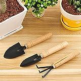 KRIYAA POKARI Wooden Handle Small Sharp Shovel Rake Mini Garden Tool Set (3 Piece Set)
