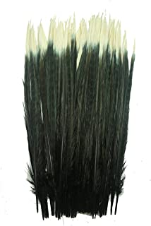 Insomnia Star Dyed Pheasant Tail Feathers 100 pcs Black and White 40-45cm/16-18inch