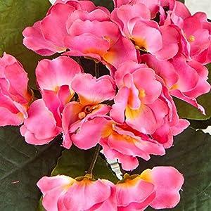 Silk Flower Arrangements Beauty Pink Artificial African Violet Silk Flower Bushes   3 Individual Silk Bushes