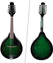Dilwe Mandolina, 22 Fret Madera 8 Cuerdas Mandolina con Llevar Bolsa de Almacenamiento, Verde