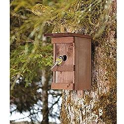 attirer les oiseaux comment les attirer. Black Bedroom Furniture Sets. Home Design Ideas
