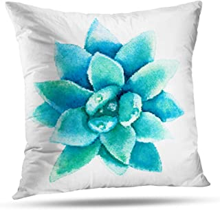 Alricc Decorative Throw Pillows Halftone Watercolor Succulent Flower Rose Plant Desert Pillow Cushion Cover for Bedroom Sofa Living Room 20 x 20 Inch
