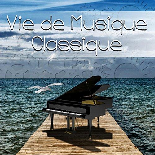 Vie de Musique Classique - Mode de Vie, Vision du Monde la Musique, Coexistence avec la Musique Classique, Musique Instrumentale
