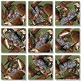 B Dazzle River Otters Scramble Squares 9 Piece Puzzle