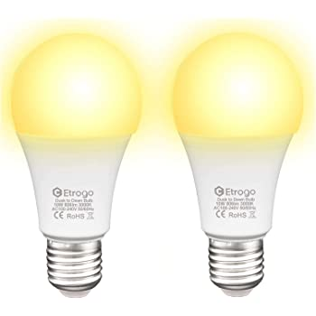 LAMPADINA ad incandescenza 60v 50ma 3w ba9s 10x28mm Lampadina Lampada Lampadina 60 Volt 50ma 3 WATT NUOVO