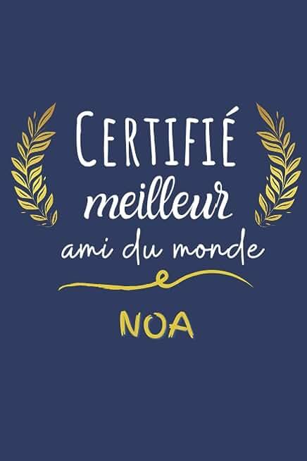 Certifié meilleur ami du monde Noa: Mon Meilleur ami Noa pour la vie, 120 Pages, 15.24 x 22.86 cm Carnet de notes/Bloc Notes/Mémoire/Cadeau Original ... meilleur ami, copain, cousin, oncle, papa