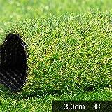 Tappeto erboso artificiale GAPING Alta qualità Prato Sintetico Prato Tappeto All'aperto Giardino al Coperto Paesaggio 30 Mm di Altezza Decorazione 3 Colori (Color : C, Size : 2X4M)
