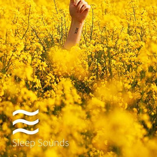 Enjoyable Relaxation of Snug Soughs for Sleep