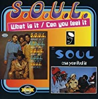 What Is It / Can You Feel It by S.o.u.l. (1996-07-29)
