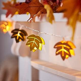 Best turkey string lights Reviews