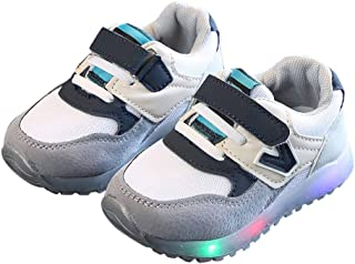 Wanka Boys and Girls Fixed Lace with Velcro Sneakers in Gray Colour