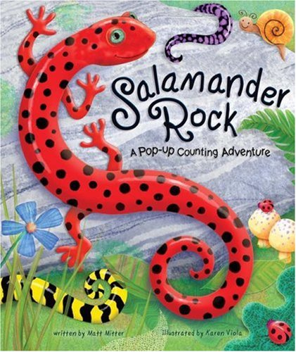 Salamander Rock: A Pop Up Counting Book (Pop-Up Counting Books)