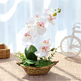 GreensCharm Artificial Orchid Flower Fake Phalaenopsis Faux Potted Bonsai with Ship Shape Pot, 11 Inch Tall (White)