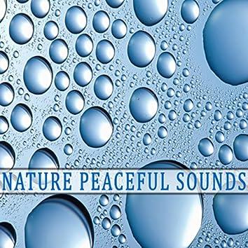 Natural Spa and Meditation