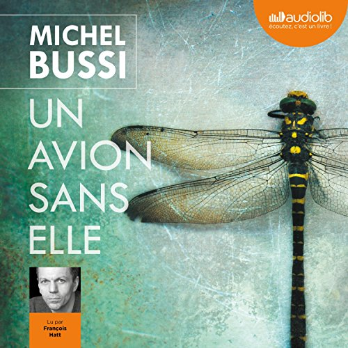 Un avion sans elle audiobook cover art