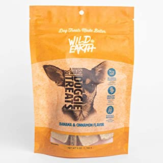 Wild Earth Protein superfood Cinnamon