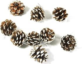 BESTOYARD 6/pcs de No/ël Pommes de pin Naturel givr/é Pommes de pin D/écorations pour d/écoration de No/ël Hiver No/ël