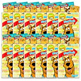 Scooby Doo Party Favors Pack ~ Bundle of 12 Scooby Doo Play Packs...