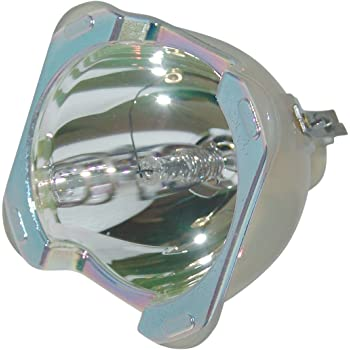 Replacement for 308933-bare Bulb Only Projector Tv Lamp Bulb by Technical Precision