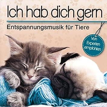 Ich hab dich gern - Entspannungsmusik für Tiere