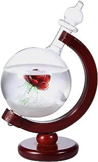 HY-MS ストームグラス 地球儀 天気予報器 結晶観察器 室内装飾(母の日 ・ バレンタイン ・ 結婚記念日 など 様々な お祝い の シーン に 最適 )