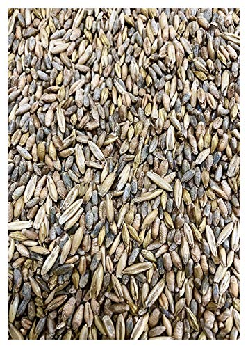 Crooked Bend 25lb Whitetail Deer Food Plot Seed   Cereal Grain Rye Wheat Triticale Barley Oats   Last Resort Blend