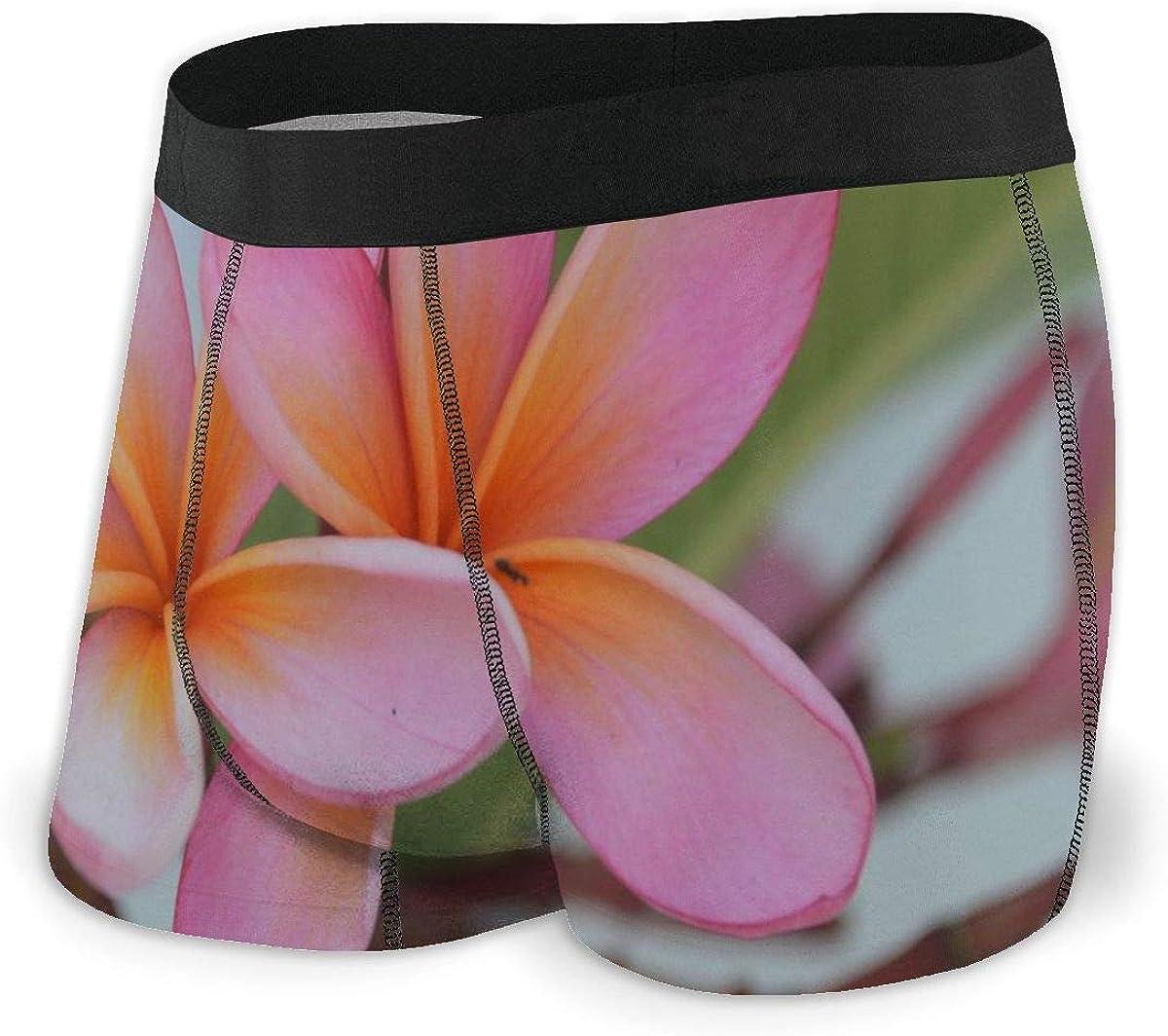 Randolph Wordsworth Mens Boxer Briefs White Plumeria, Frangipani, Pagoda Trees, Natural Breathable Underwear