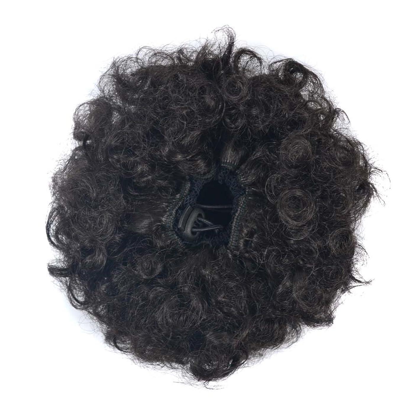 ジョセフバンクス含意以上JIANFU 爆発ヘッドふわふわ毛髪の拡張子カールヘアの毛の拡張子キャタピラーのかつらのサイズ選択ウィッグの部分 (Color : Brownish black(S))