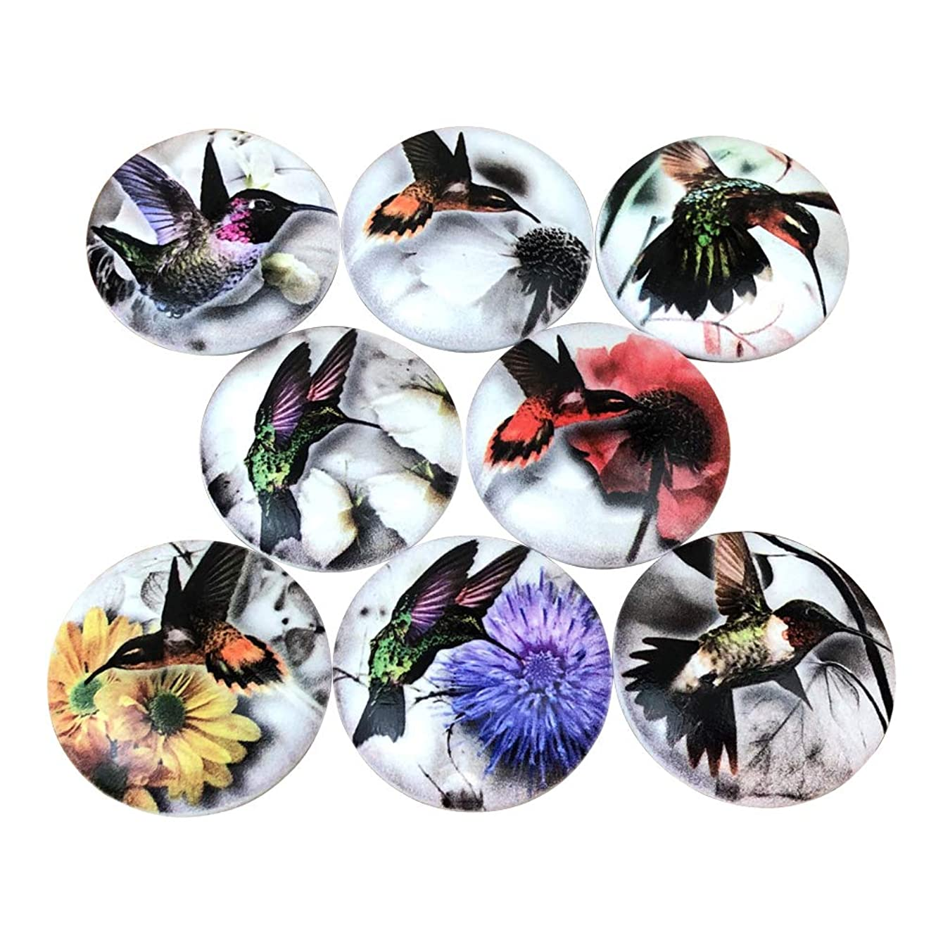 Set of 8 Hummingbird Cabinet Knobs