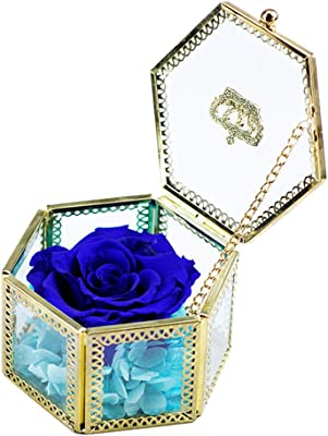 Sister Gifts for Women Aunt AESTHING Handmade Preserved Fresh Flower Rose Blue Mother/'s Day Valentine/'s Day Anniversary Mothers Day,Valentines Day Birthday Upscale Immortal Flowers Girls Her Wedding