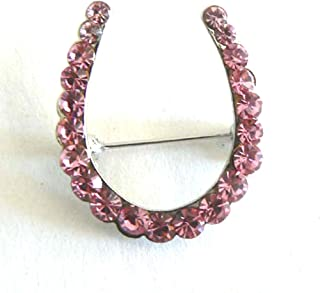 Silk Salon Lucky Horseshoe Brooch Pin Rhinestone Crystal Jewelry Silver Purple