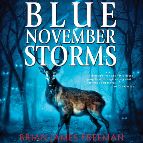 Blue November Storms (Novella) cover art