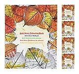 hibuy Livre de coloriage Anti-Stress pour Adulte 120 Feuilles 25 x 21 cm, 5 x das Buch