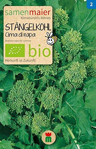 BIO Stängelkohl, Cima di rapa (Brassica rapa var. cymosa)