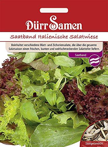 Salat Italienische Salatwiese Saatband 5 m